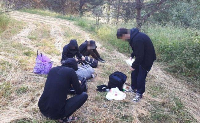 Пограничники Литвы задержали еще 36 нелегальных мигрантов — EADailyRU —  Литва. Новости Литвы