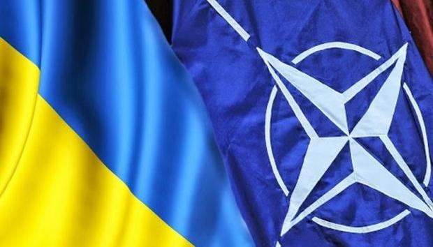 Словакия заявила о поддержке Украины в ее стремлении в НАТО — Новости  политики, Новости Украины — EADaily