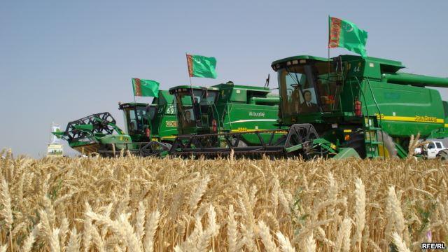 Туркмения закупает продовольственную пшеницу