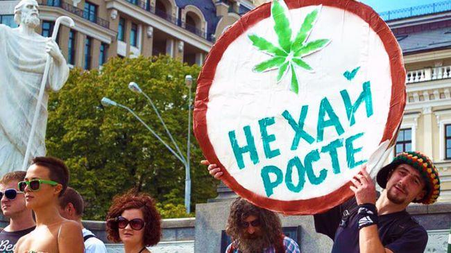 Россия закон о марихуане как бросит марихуану